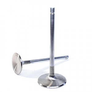 Manley Budget Performance Stainless Steel Valves